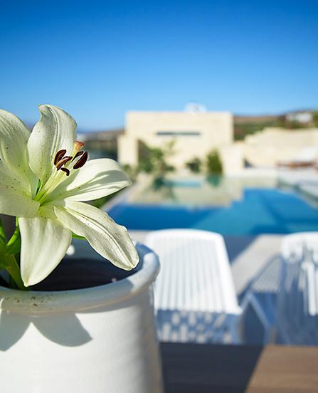 Youphoria Sea View Villas Kissamos Chania Crete